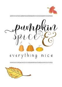 Pumpkin, Spice & Everything Nice!